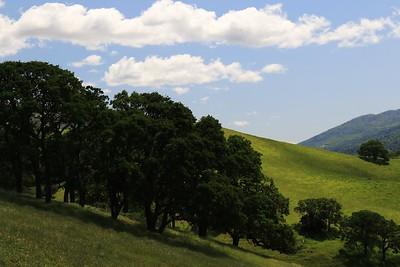 Del Valle Apr14  30