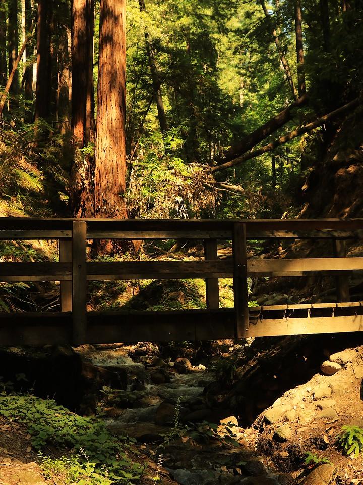 Fall Creek hike July9  023
