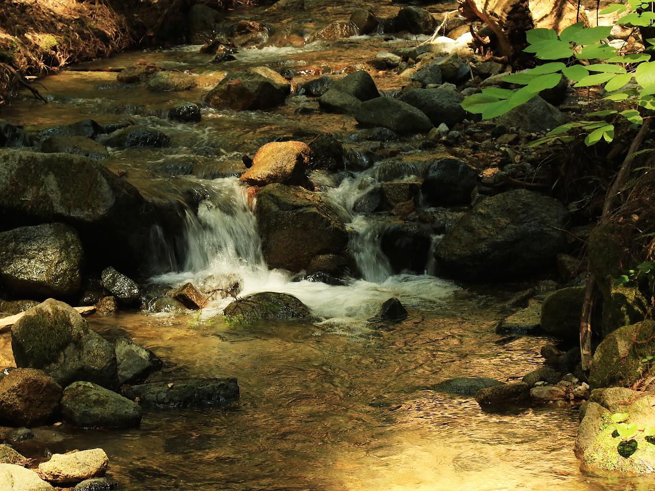 Fall Creek hike July9  057