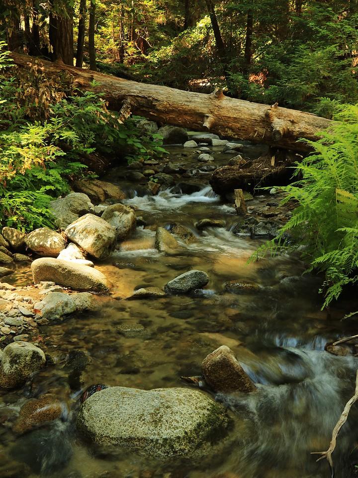 Fall Creek hike July9  098