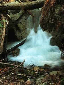 Fall Creek hike July9  045