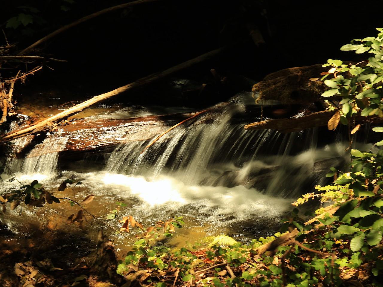 Fall Creek hike July9  092