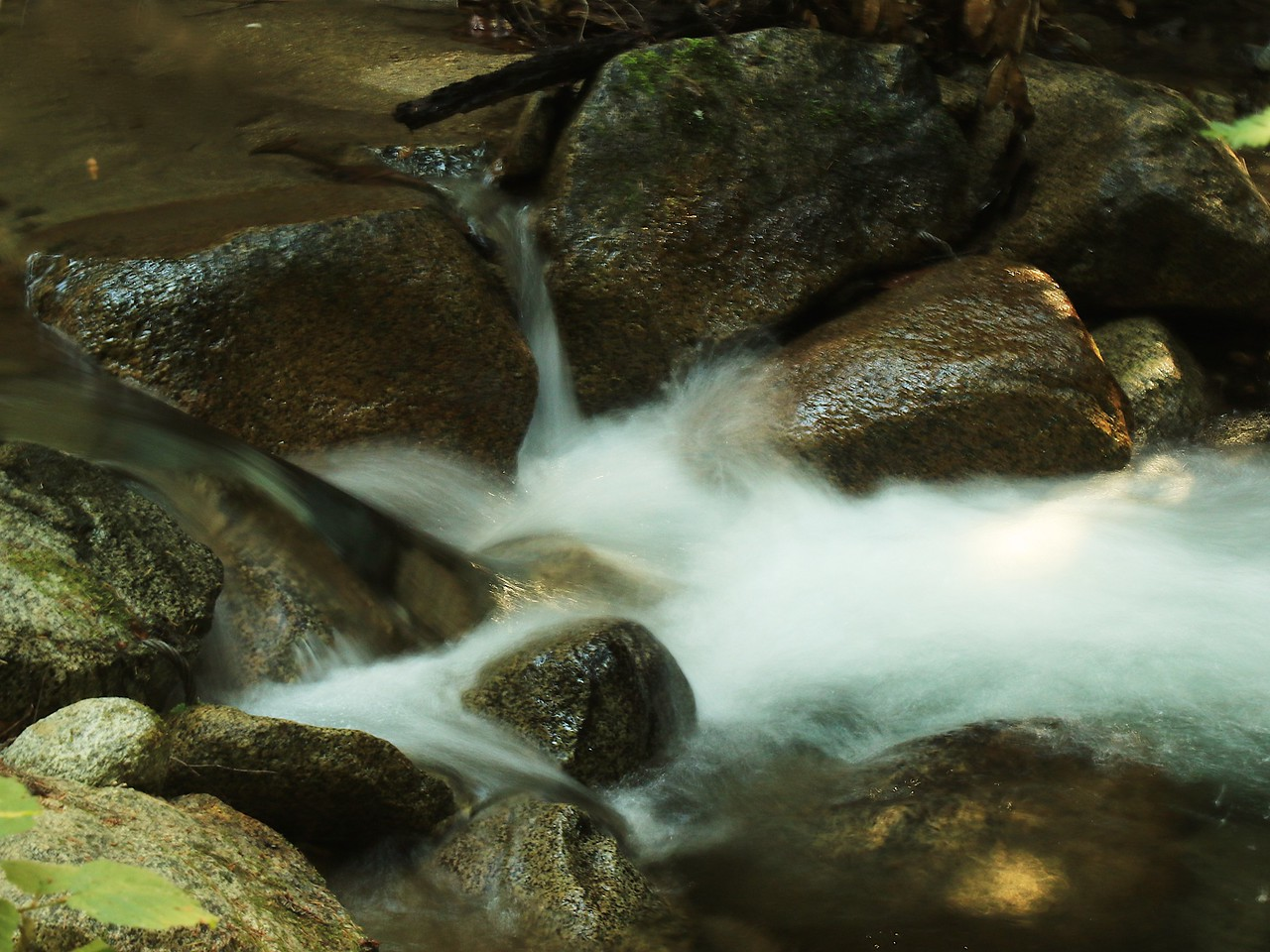 Fall Creek hike July9  013