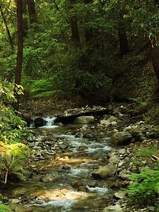 Fall Creek hike July9  020