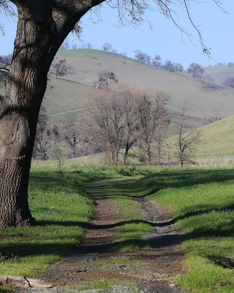 Los Vaqueros hike Jan 16th  160