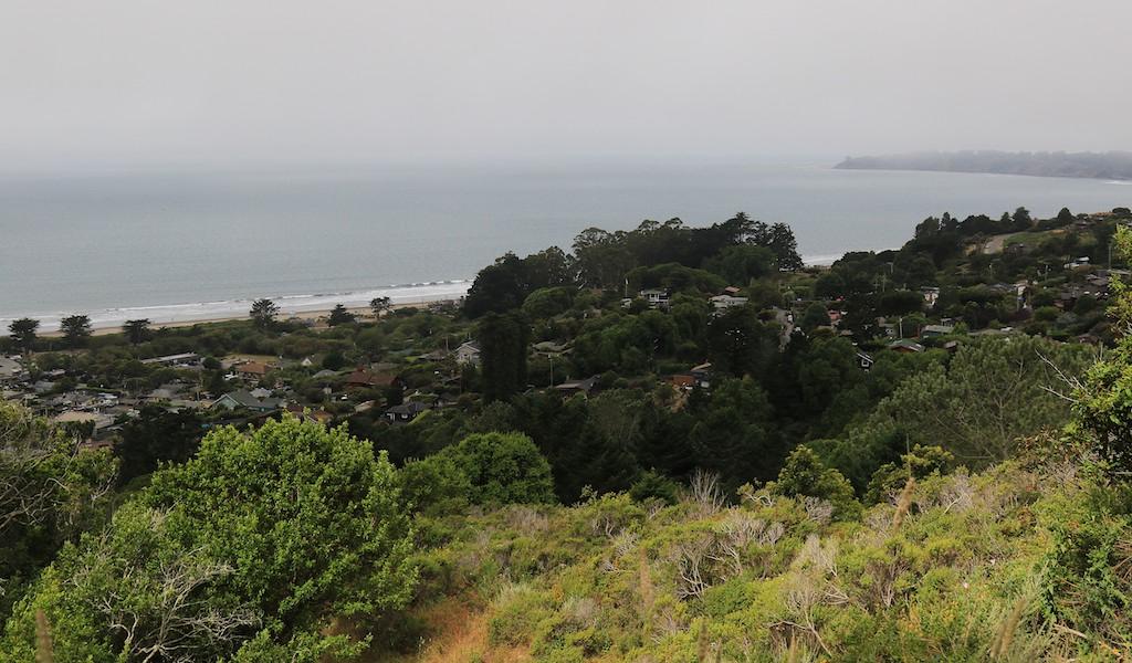 MtTam hike July2  108