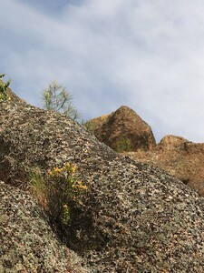 Pinnacles Apr23  55