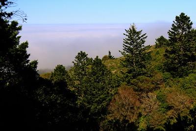 Pt Reyes hike 052017  052
