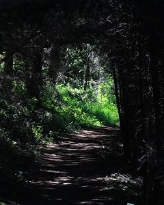 Pt Reyes hike 052017  058