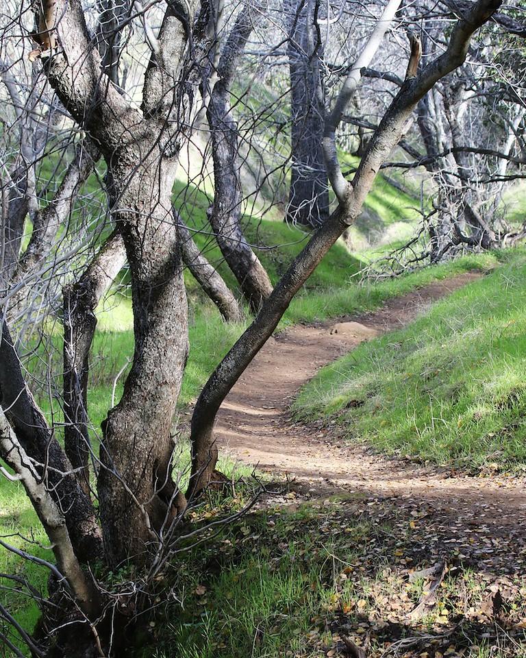 Round Valley hike Jan1  111