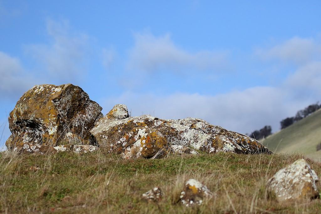 Round Valley hike Jan1  029