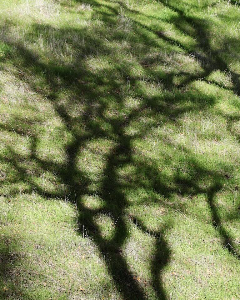 Round Valley hike Jan1  110
