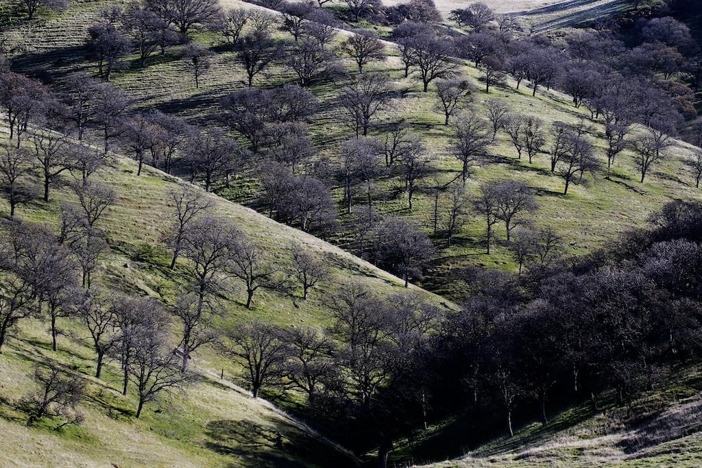 Round Valley hike Jan1  072