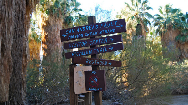 Hiking New Trail at the Coachella Valley Preserve