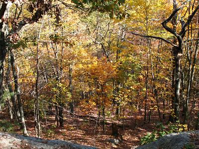 Hiking Nobscot