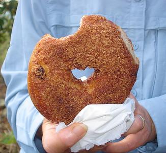 Our favorite bagel: Super Cinnamon