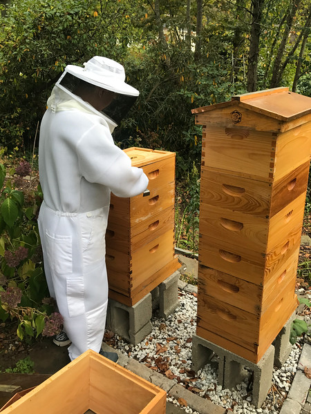 Hive 1 Deep (EM) plus three Mediums  (C,E, F)<br /> Hive 2 Five mediums<br />  (N,G, D, B, M ). Apivar still in since early September. <br /> Bucket feeders w Fumigilin  on Hive 1 and 2 removed 10/22