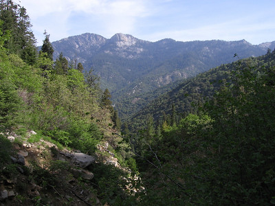 Looking north across the South Fork Kaweah River Canyon to Homer's Nose.