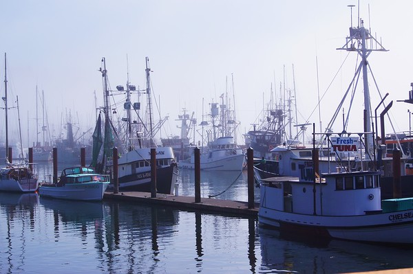 Fishing Boats, Newport, Oregon
