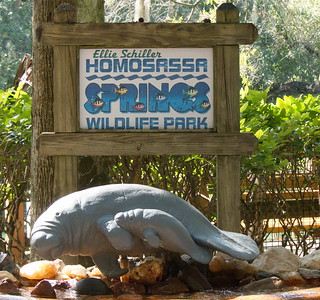 Homosassa Springs Wildlife Park