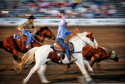 Horses at a Rodeo in Strong City, Kansas - Photo Taken: June 8, 2008