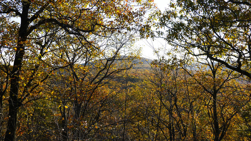 Hudson Valley Autumn 2013