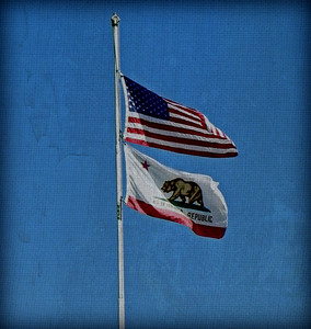California Pride.