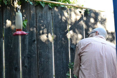 Hummingbird & Steve 6/26/13