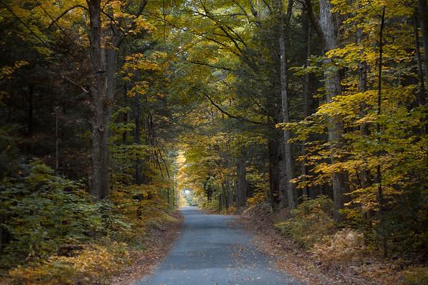 Hunt for Autumn