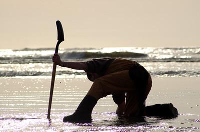 Razor Clam Digging - Pacific Beaches