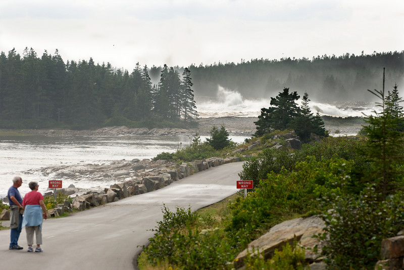 "The near cove was well protected, so almost no water movement.  The far cove (almost a mile away) has big waves crashing in (about midway, and another just behind and to the right of the set of trees above the right-most ""Wrong Way"" sign)."