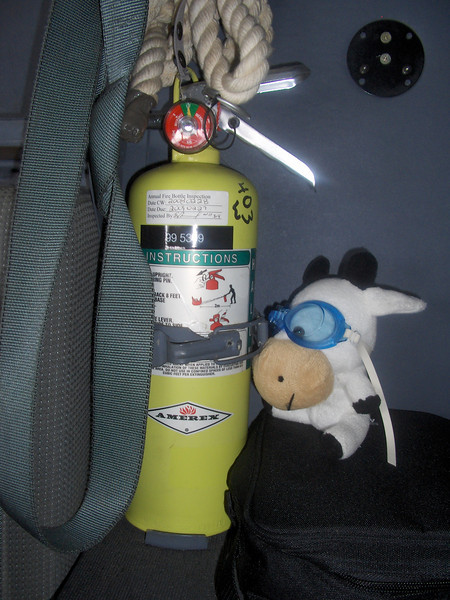 All fire extinguishers are ready to go.