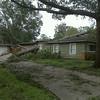 Tree on house in Houston