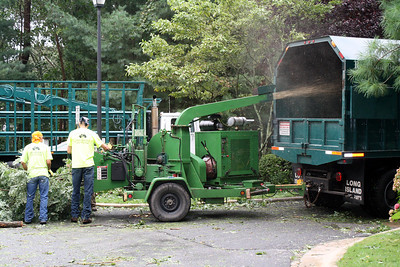 Cleanup Crew by Raymond Brothers Tree Service...Middle Island