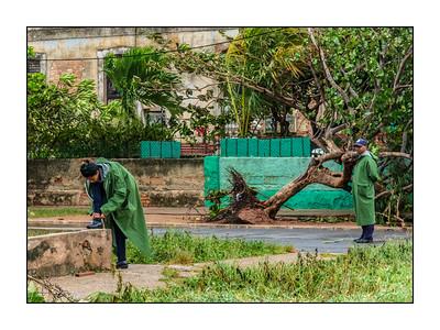 Havana_Irma_100917_DSC0533
