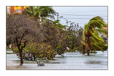 Havana_Irma_100917_A3A0035_1