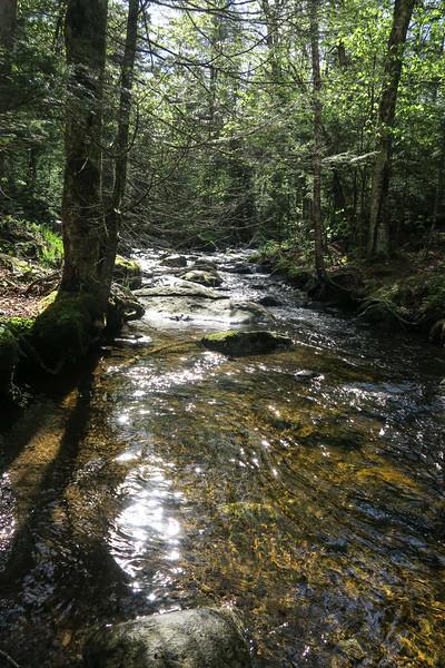 Crossing Gulf Brook near lean to
