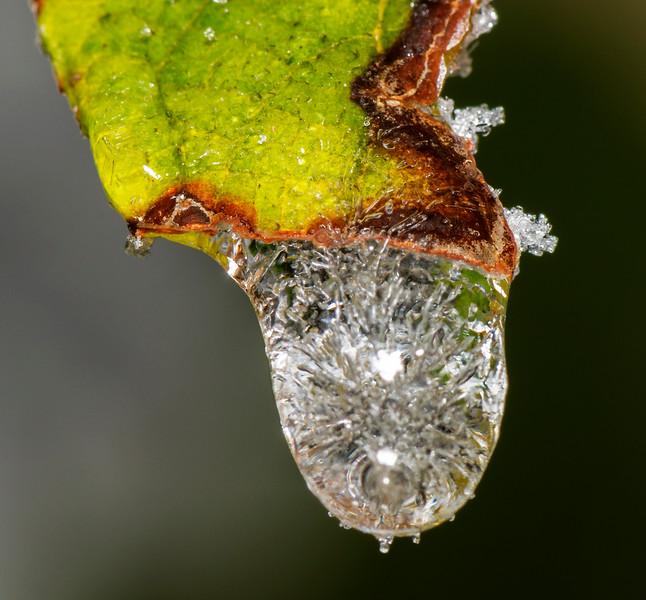 Frozen ice drop