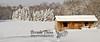 01-23-2013-Snow_Horses-0771-2