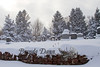 12-14-2012-Winter-Cemetery_French_Street-7151