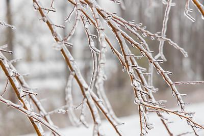 20210214-Ice_Storm-028