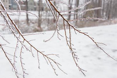 20210214-Ice_Storm-033