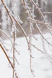 20210214-Ice_Storm-027