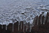 Ice Formation- Gooseberry Falls S.P.