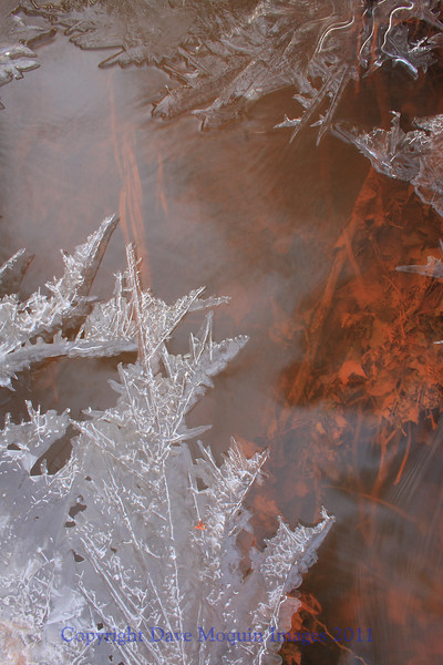 Crystalized Creek- Cedar Interpretive Trail
