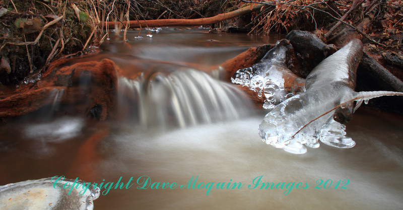 Cedar Creek's Peaceful Flow
