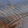 Ripples in water- Sherburne NWR