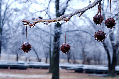 Icy Gumballs, Pere Marquette State Park, IL