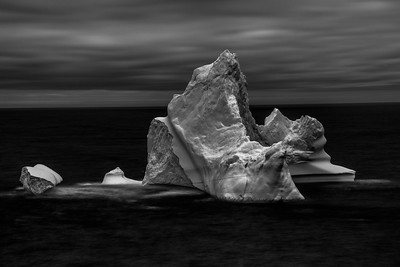 Iceberg-Grates Cove in Monochrome - D859980