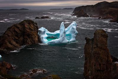 Iceberg in Spillars Cove, Twillingate